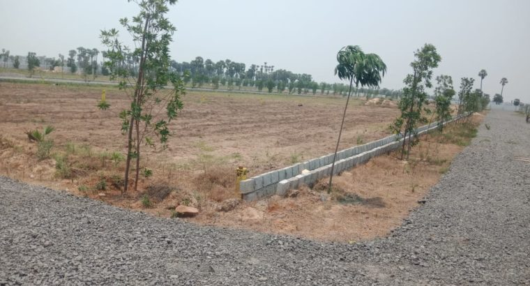 Residential Open Plots for Sale at Chirala Prakasam Dist.