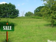 Agriculture Lands For Sale At Nellore And Prakasam District.