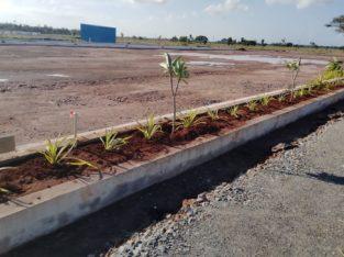 Surya Homes – 226 East Facing Plot