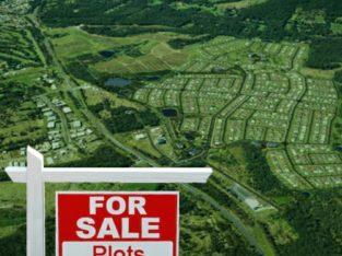 DTCP Plots For Sale Shadnagar Rangareddy District