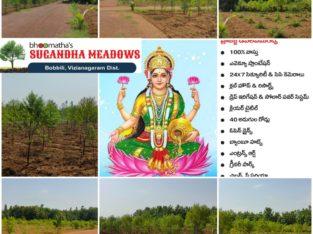 Bhoomatha Real Properties Sugandha Meadows at Bobbili