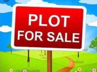 VMRDA Approved Plots For Sale at R Thallavalsa (Tagarapuvalasa)