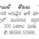 Palm Oil Plots Available For Sale, Near Muniguda, Orissa.